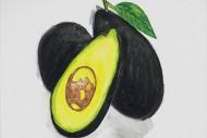 Avocadossmall